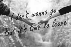 The Lumineers - Gale Song Andrew The Lumineers Gale Song, The Lumineers Quotes, Song Lyric Quotes, Song Lyrics, Psalm 96, Im Falling For You, Sing To The Lord, Old Letters, Music Music
