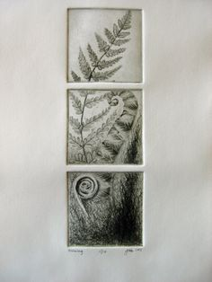 Fern Art Print Limited Edition Drypoint by jmeArtandDesigns, $75.00
