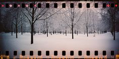 Potsdam II by Julián Sánchez-Ostiz Lange, via Flickr