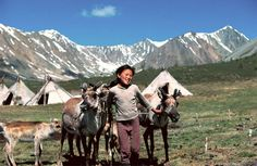 in Mongolia, Tsaatan children are taught the ancient herding skills of their parents by corralling reindeer on the grasslands.