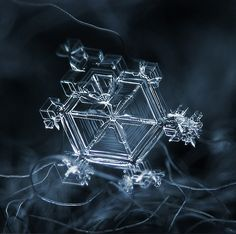 Amazing Close Up Photos of Snowflakes Will Give You Goosebumps