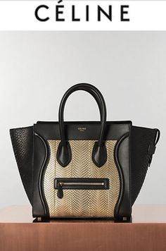 I'm Literally Dying For One Of These - Celine Bag 2013 summer collection