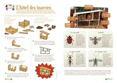 http://clg.lorris.svt.free.fr/IMG/gif/Hotel-insectes.gif