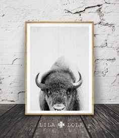 Buffalo Print, Bison Wall Art, Black and White Buffalo, Modern Minimal, Grey Decor, Animal Photography, Printable Art, Instant Download by lilandlola on Etsy https://www.etsy.com/ca/listing/267558590/buffalo-print-bison-wall-art-black-and