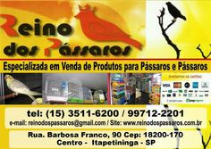 http://www.reinodospassaros.com.br/loja/
