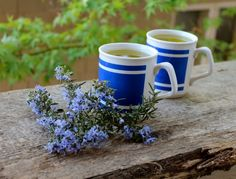 Rosemary Tea...Sharpen your brain and boost your mood with this simple tea... ☀CQ #glutenfree #organic