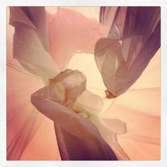 Heavenbed  #instadaily #webstagram #instamood #ipopyou #instagramers #instafamous #igdaily #igers #igaddict #instaphoto #bestoftheday #photooftheday #followme #followback #likeforlike #webstagram #statigram #clubsocial #tweegram #picoftheday Heavenbed  #instadaily #webstagram #instamood #ipopyou #instagramers #instafamous #igdaily #igers #igaddict #instaphoto #bestoftheday #photooftheday #followme #followback #likeforlike #webstagram #statigram #clubsocial #tweegram #picoftheday