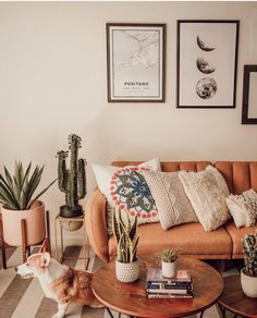 Images and videos of home decor - – A mix of mid-century modern, bohemian, and industrial interior style. Home and apartment decor, - Boho Living Room, Bohemian Living, Living Room Decor, Bedroom Decor, Bohemian Beach, Modern Bohemian, Design Bedroom, Dining Room, Hipster Living Rooms