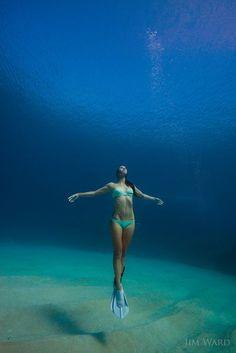 11 Sensational Underwater Camera For Diving Underwater Camera Disposable Kodak Under The Water, Under The Sea, Underwater Photos, Underwater Photography, Portrait Photography, Gopro Underwater, Swimming Photography, Underwater Swimming, Photography Camera