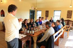 Ultimate Tour with Sean Sears, Managing Partner. Photo credit: Wines of Novs Scotia Wine Making, Nova Scotia, A Boutique, Photo Credit, Wines, Vineyard, Tours, Vineyard Vines