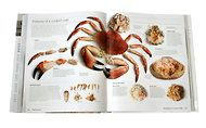 seafood: how to buy, prepare and cook the best sustainable fish and seafood from around the world.