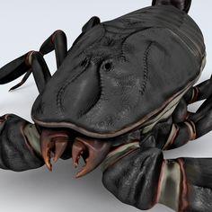 黑蝎子3D模型