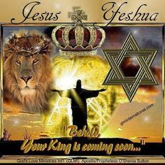 Hear Oh Israel, Jesus/Yeshua is the True and Living GOD. He defeated sin on the Cross. He Rose from the dead and He will return to triumph over the whole earth! King Jesus, Jesus Is Lord, Jean 3 16, Jesus Reyes, Tribe Of Judah, Jesus Is Coming, Prophetic Art, Jesus Pictures, Lion Pictures