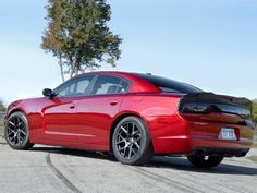 Dodge Charger Scat Package (2014)