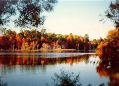 Newport News Park- Newport News, Virginia.. right outside of the gate of Langley/Eustis.. beautiful park and camping!