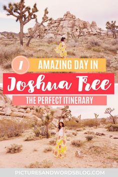 The Ultimate Joshua Tree Day Trip Guide | The Perfect One Day in Joshua Tree Itinerary | Joshua Tree National Park Guide | Joshua Tree Travel Guide | California Itinerary Inspiration | California Road Trip Inspiaration | California National Parks Road Trip | USA National Parks Road Trip | Southwest Road Trip Inspiration