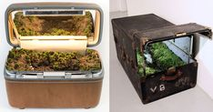 As part of her ongoing series titled Traveling Landscapes, New York-based artist Kathleen Vance constructs entire landscapes inside of old steamer trunks and repurposed luggage. Many of the pieces incorporate real running water, soil, and living plant life to form encapsulated environments, though o