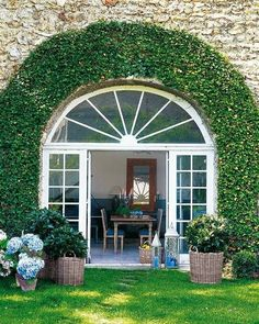 Ivy controlled---trying to achieve this over my front door.