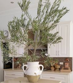 Our Tuscan Urn , an olive branch, and that kitchen...@thebeigelarder has transported us to the Italian countryside #mypotterybarn #potterybarnaus #rustic