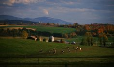 Middlebury Vermont, home of Middlebury College #wow #america #places