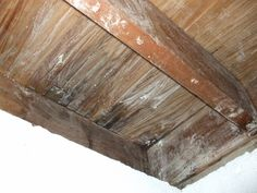 How to put Borax (to kill mold roots) on moldy wooden house structural parts written by a homeowner who did it.  Photos included.