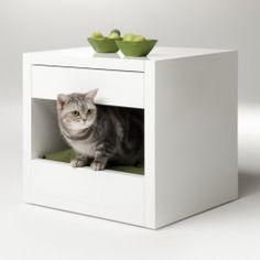 Binq Design has come out with the Bloq, a modern living solution for you and your pet.