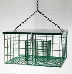 Songbird Essentials Squirrel Proof Suet Palace Wild Bird Feeder
