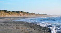 Jütland, die Natur beherrscht hier alles. Der Horizont scheint nicht aufzuhören, die Sandstrände ziehen  durch die Brandung der Nordsee.