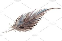 Watercolor feather isolated vector Graphics Watercolor brown gray grey single feather vector isolated---**Keywords:**art, watercolor, vector by Art By Silmairel