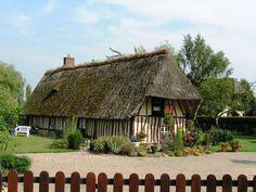 maison normande en torchis et toit de chaume   France