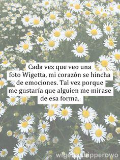 La realidad de wigetta…..    via Tumblr