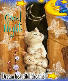 Good night sister and brother. and all, sweet dreams♥★♥, ( qijed tafigli rasi? Good Night Sister, Good Night I Love You, Good Night Prayer, Good Night Blessings, Good Night Sweet Dreams, Good Night Image, Good Morning Good Night, Night Time, Funny Good Night Quotes