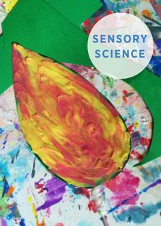 If you're creating a lesson plan for your classroom or homeschool, or simply looking for educational activities for your kids, this list of sensory science activities is packed full of fun, learning ideas.