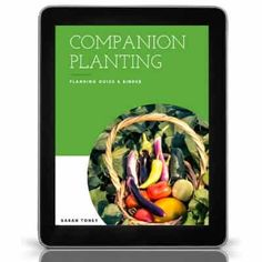 Many gardening supplies can be found for cheap or even free! Here are 9 gardening supplies you can get for free! Eggplant Companion Plants, Cucumber Companion Plants, Gardening Supplies, Garden Care, Companion Planting Guide, Squash Bugs, Roasted Tomato Sauce, Garden Pests, Thing 1