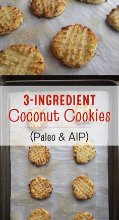 3-ingredient coconut cookies - Paleo, grain-free, sugar-free, gluten-free, dairy-free, + egg-free! AIP, too.