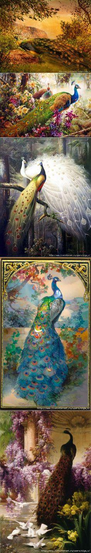 павлины Peacock Bird, Peacock Theme, Birds, Peacocks, Shiva, Antiques, Outdoor Decor, Artworks, Crafting
