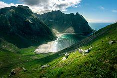 Patikointi Norjan puolella ja uskomaton Ryten Places To Go, Waterfall, Outdoor, Outdoors, Outdoor Living, Garden, Waterfalls