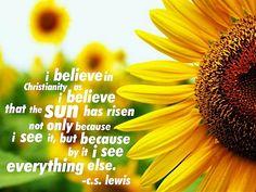 c. s. lewis quotes | Lewis Quote