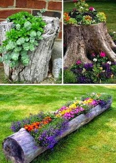 Garden Ideas and DIY Backyard Projects! Today we present you one collection of The BEST Garden Ideas and DIY Backyard Projects offers inspiring backyard ideas. These are amazing projects that you…More Tree Stump Planter, Log Planter, Planter Ideas, Tree Planters, Diy Planters, Flower Planters, Backyard Planters, Recycled Planters, Planter Boxes