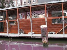 The CatBoat in Amsterdam - a floating cat shelter that I MUST visit!
