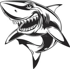 Illustration of Vector illustration: toothy white shark vector art, clipart and stock vectors. Drawing Cartoon Characters, Character Drawing, Cartoon Drawings, Animal Drawings, Art Drawings, Hai Tattoos, Shark Drawing, Shark Logo, Character Concept