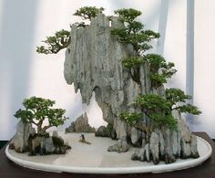 "El Salvador, Bonsai paisajismo. This could be an inspiration for a hypertufa - a draped style. Love this as a ""craggy mountain scene."""