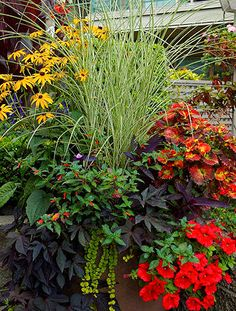 Container Gardening container garden, landscape design, ornamental grasses, flower - Learn the dos and don'ts of creating jaw-dropping containers Container Flowers, Container Plants, Container Gardening, Succulent Containers, Container Design, Landscape Design, Garden Design, Fine Gardening, Vegetable Gardening