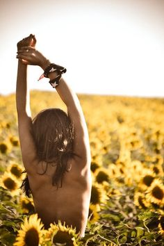 Leo in a field of sunflowers -