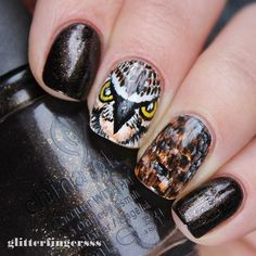 """Handpainted owl nail art with @chinaglazeofficial Midtown Magic. I know, it looks like a hawk...oh well, I like it anyways :D #nailartwow #nailartaddict #nails2inspire #nailartjunkie #nailartdesign #nailart #nailsofinstagram #nailstagram #nailswag"" Photo taken by @glitterfingersss on Instagram, pinned via the InstaPin iOS App! http://www.instapinapp.com (02/02/2015)"