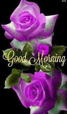 Good Morning Bible Quotes, Good Morning Gift, Good Morning Coffee Gif, Good Morning Sunday Images, Good Morning Picture, Good Morning Greetings, Morning Qoutes, Sunday Morning, Good Morning Flowers Pictures