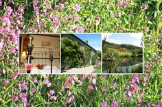 Huxtable Farm B&B quality en-suite accommodation, West Buckland, situated between Barnstaple & South Molton, near Exmoor, Devon