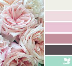 { flora hues } image via: @clangart