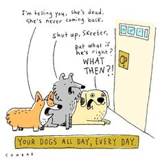 Your dogs all day, every day