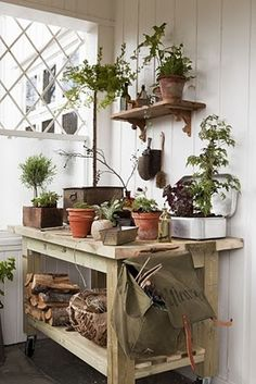 Potting shed / area
